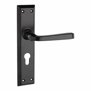 black lever handle on backplate handles inc